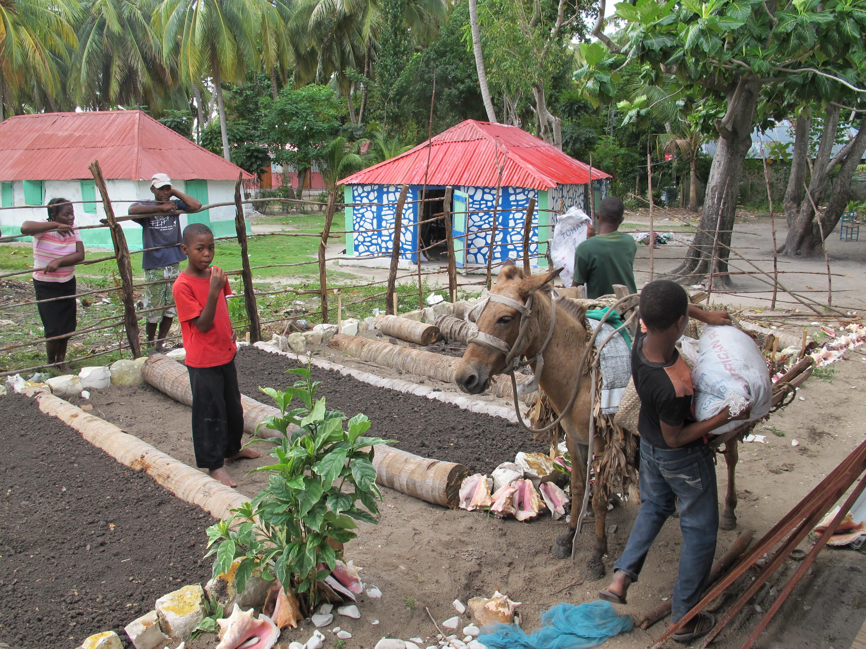Hauling in dirt for the garden
